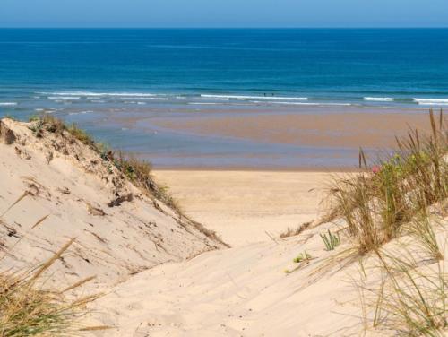 spiaggia-lacanau-ocean